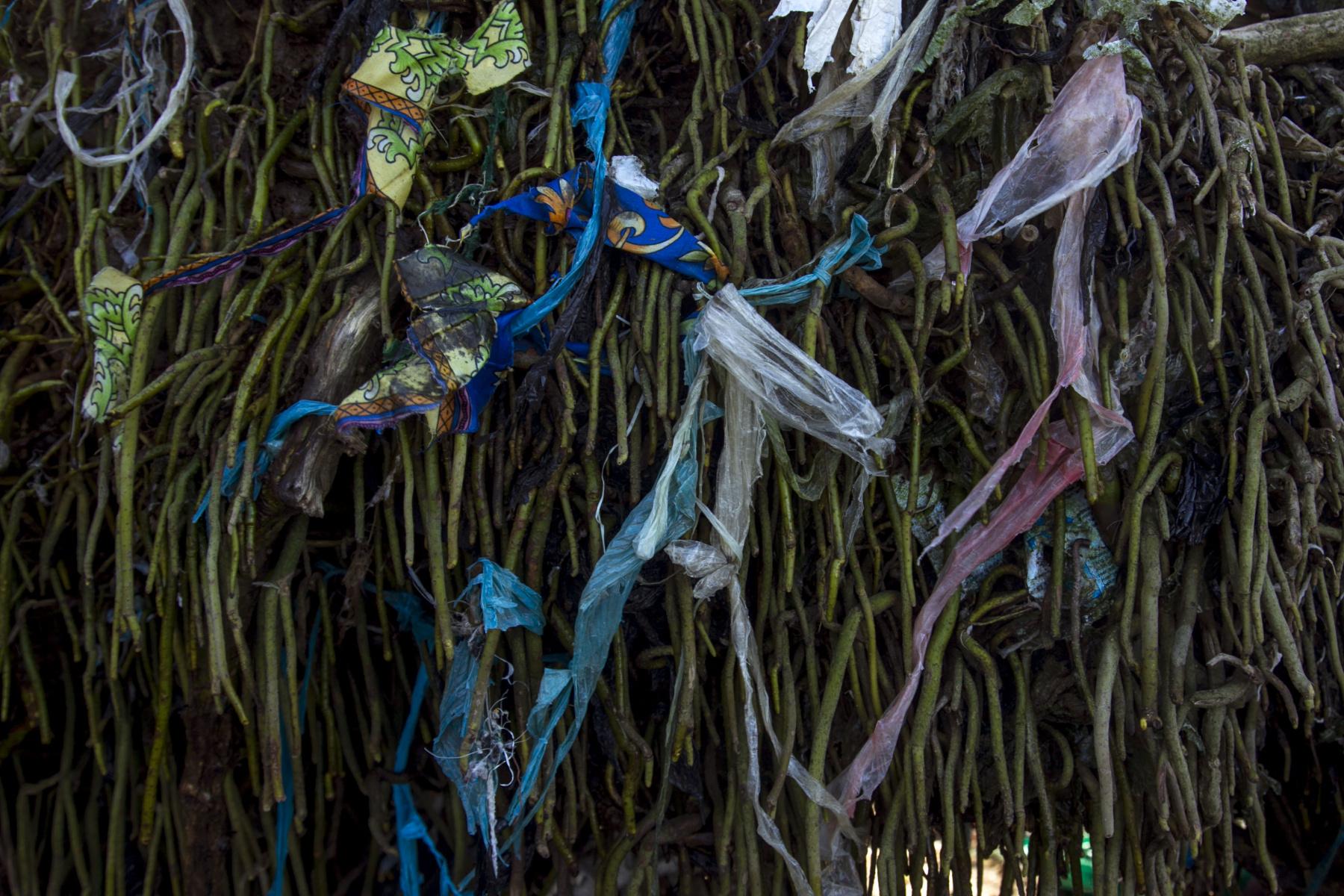 Sampah plastik yang tersangkut diakar akar mangrove akan mengganggu proses respirasi atau pernafasan akar untuk mendapatkan oksigen. Gangguan ini akan menyebabkan pohon akan mati secara perlahan.