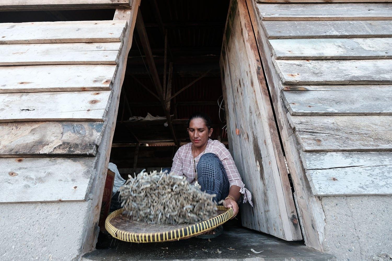 Alia memisahkan kulit ikan dengan ikannya di Desa Tanjung Binga, Belitung, pada 19 Agustus 2020. JP/Donny Fernando